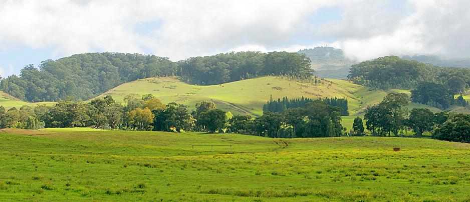 Haleakala Ranch Upcountry Maui