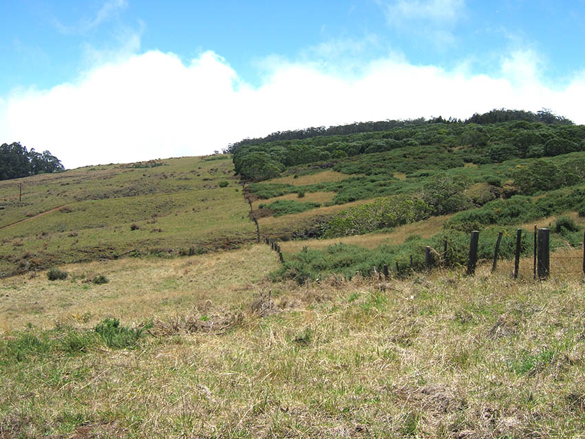 haleakala-ranch-conservation4