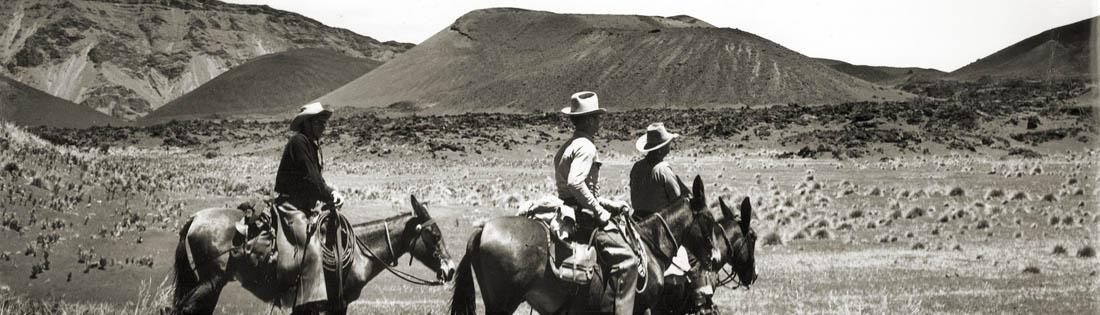 Haleakala Ranch Paniolo