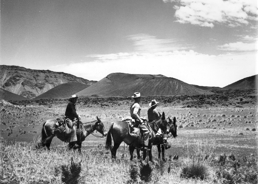 haleakala-ranch-historical-Crater with 3 riders